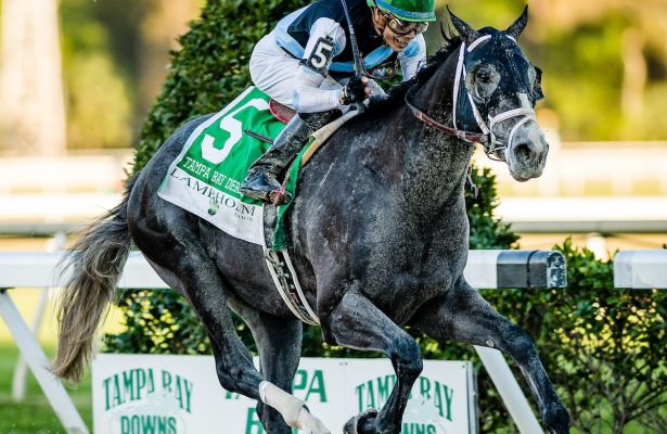 03-11-17 Tampa Bay Derby Day